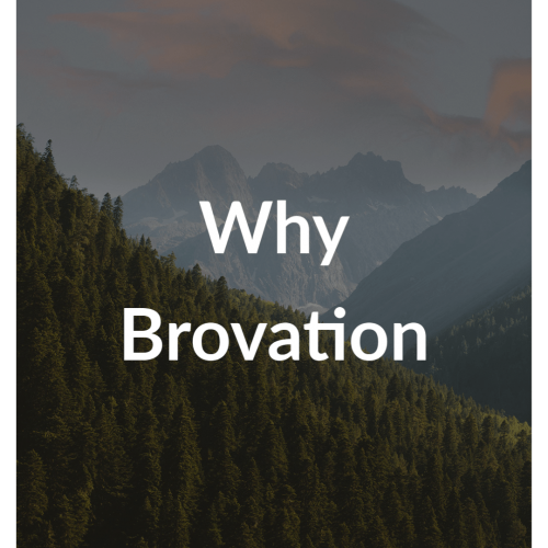 Why Brovation